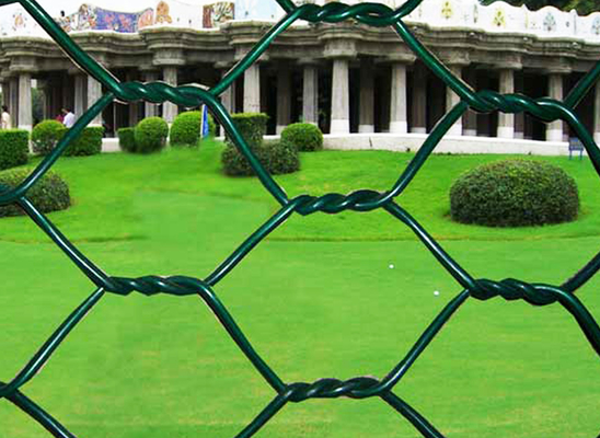 PVC Coated Hexagonal Wire Mesh Chicken Wire Mesh Iron Wire Material For Farm